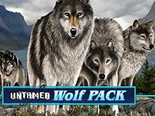 Untamed Wolf Pack играть онлайн